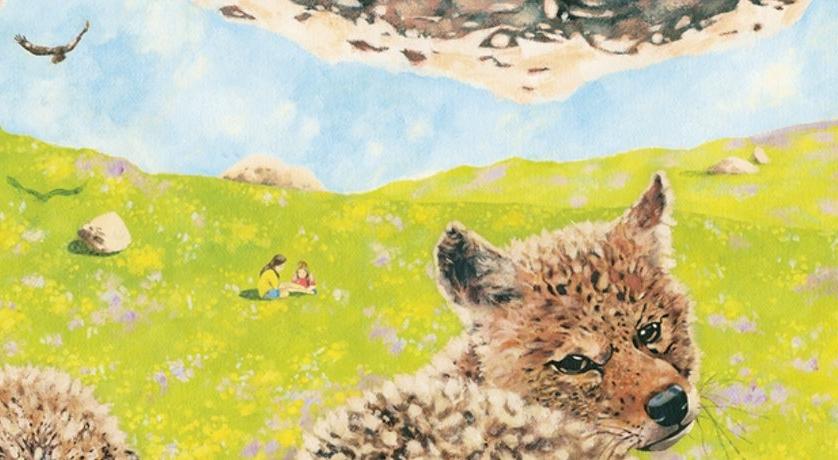 Coyote Catalog art