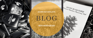 Acorn Naturalists Blog