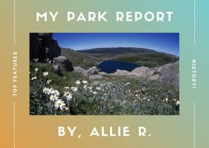 Park report activity