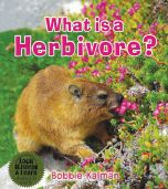 What is a Herbivore: Look, Listen, and Learn Series (Book & CD)