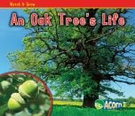 Oak's Life, An (Watch It Grow Series)