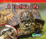 Turtle's Life, A (Watch It Grow Series)