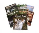 Animal Senses & Anatomy Series Collection (Discounted Set of 7 Titles)