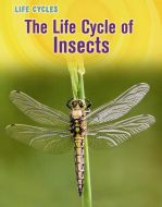 Life Cycle of Insects, The (Animal Class Life Cycle Series)
