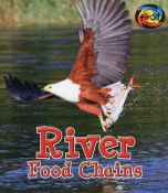 River Food Chains