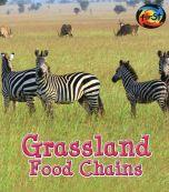 Grassland Food Chains