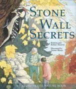 Stone Wall Secrets