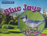 Blue Jays (Backyard Bird Series)