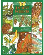 Ancient Forests: Discovering Nature