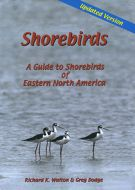 Shorebirds: A Guide to Shorebirds of Eastern North America (DVD)