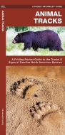 Animal Tracks (Pocket Naturalist® Guide)