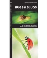 Bugs & Slugs: Invertebrates of North America (Pocket Naturalist® Guide)