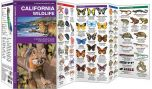 California Wildlife (Pocket Naturalist® Guide)