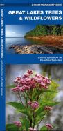 Great Lakes Trees & Wildflowers (Pocket Naturalist® Guide)