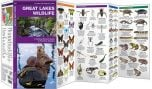 Great Lakes Wildlife (Pocket Naturalist® Guide)