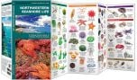 Northwestern Seashore Life (Pocket Naturalist® Guide)