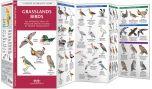 Grassland Birds (Pocket Naturalist® Guide)