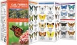 California Butterflies & Moths (Pocket Naturalist® Guide)