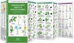 Grassland Trees & Wildflowers (Pocket Naturalist® Guide)