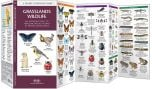 Grassland Wildlife (Pocket Naturalist® Guide)