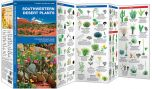 Southwestern Desert Plants (Pocket Naturalist® Guide)