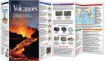 Volcanoes (Pocket Naturalist® Guide).