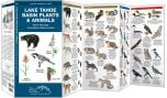 Lake Tahoe Basin Plants & Animals (Pocket Naturalist® Guide)