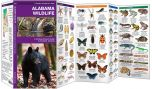 Alabama Wildlife (Pocket Naturalist® Guide)