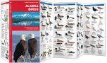 Alaska Birds (Pocket Naturalist® Guide)