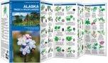 Alaska Trees & Wildflowers (Pocket Naturalist® Guide)
