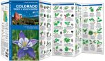 Colorado Trees & Wildflowers (Pocket Naturalist® Guide)