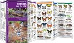 Florida Wildlife (Pocket Naturalist® Guide)