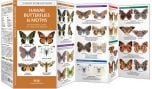 Hawaii Butterflies & Moths (Pocket Naturalist® Guide)