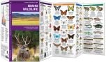 Idaho Wildlife (Pocket Naturalist® Guide)
