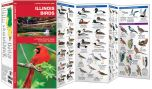 Illinois Birds (Pocket Naturalist® Guide)