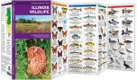 Illinois Wildlife (Pocket Naturalist® Guide)