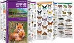 Missouri Wildlife (Pocket Naturalist® Guide)