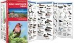 New Hampshire Birds (Pocket Naturalist® Guide)