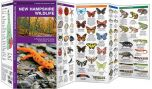 New Hampshire Wildlife (Pocket Naturalist® Guide)