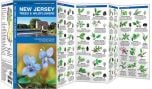 New Jersey Trees & Wildflowers (Pocket Naturalist® Guide).
