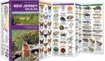 New Jersey Wildlife (Pocket Naturalist® Guide)