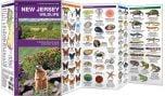 New Jersey Wildlife (Pocket Naturalist® Guide).