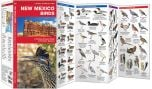 New Mexico Birds (Pocket Naturalist® Guide)
