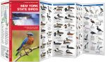 New York State Birds (Pocket Naturalist® Guide)