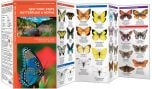 New York State Butterflies & Moths (Pocket Naturalist® Guide)