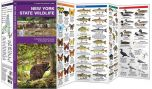 New York State Wildlife (Pocket Naturalist® Guide)