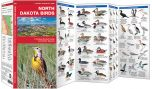 North Dakota Birds (Pocket Naturalist® Guide)