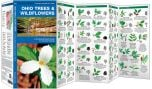 Ohio Trees & Wildflowers (Pocket Naturalist® Guide)