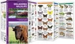 Oklahoma Wildlife (Pocket Naturalist® Guide)