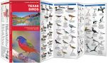 Texas Birds (Pocket Naturalist® Guide)